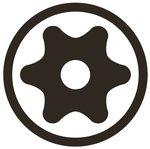 Chiave a bussola lunghezza 100 mm 6,3 mm (1/4) profilo a T (per Torx) con alesatura T30