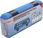 Set chiavi dinamometriche 6,3 mm (1/4) 6 - 30 Nm 10 pz